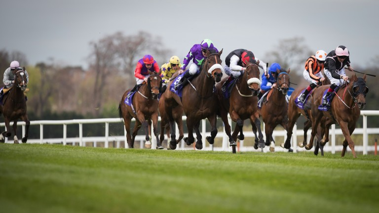 Marshall Jennings (left); just denied by Rose De Pierre in the Listed Heritage Stakes at Leopardstown in April