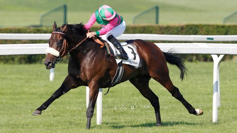 Worthadd: well-bred son of Dubawi won the Italian Derby