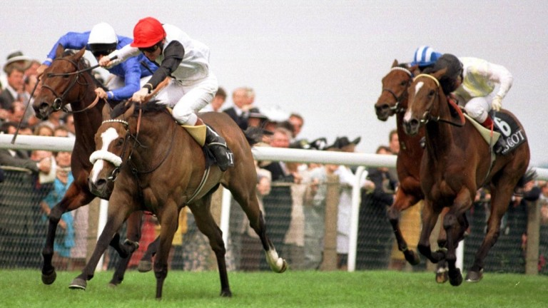 Rebecca Sharp (noseband): wins the 1997 Coronation Stakes at Royal Ascot from Ocean Ridge and Sleepytime