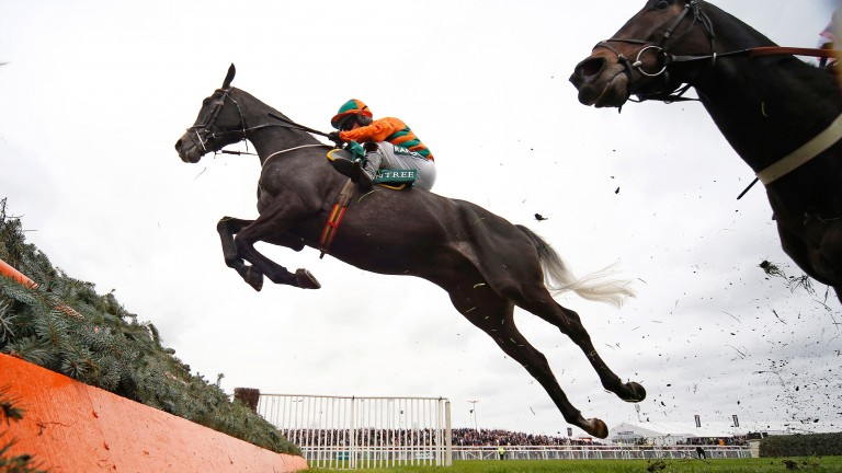 Flying Angel takes wing on the way to victory in the Manifesto Novices' Chase