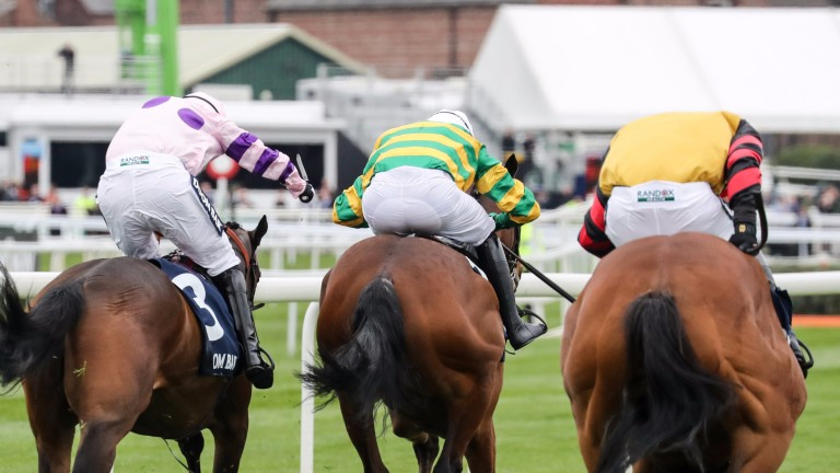Defi De Seuill and Barry Geraghty (centre) head for victory in the Anniversary Hurdle over Divin Bere (left) and Bedrock