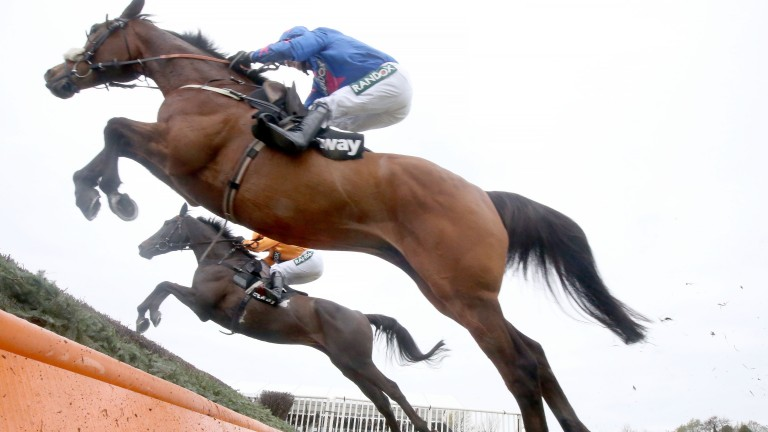 Cue Card on his way to finishing second in the Betway Bowl