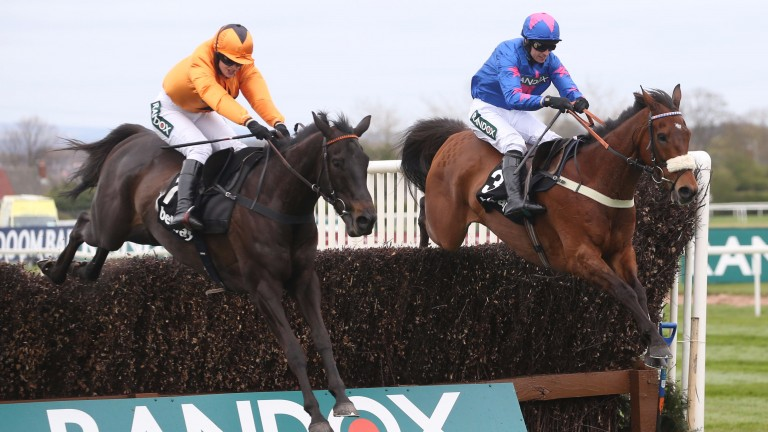 Tea For Two and Kelly jump alongside Card Card on the way to victory