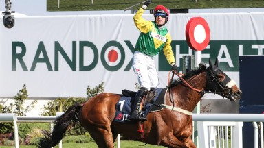 Fox Norton: drops back in trip after his impressive victory at Aintree