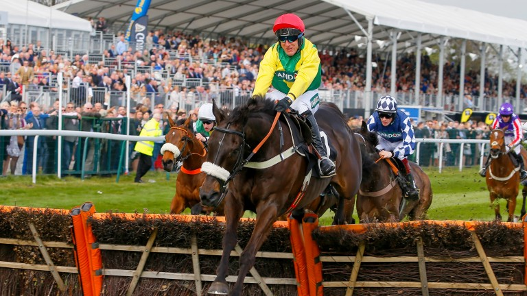 Pingshou and Robbie Power clear the last in the Top Novices' Hurdle