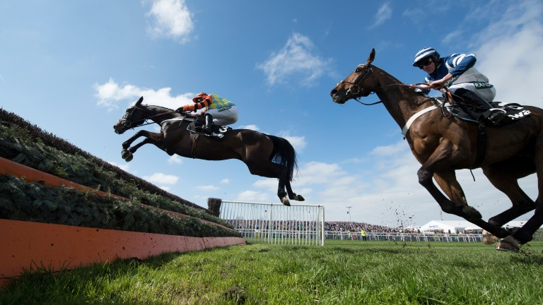 Might Bite (Nico de Boinville) puts in a magnificent jump at the last ahead of Whisper