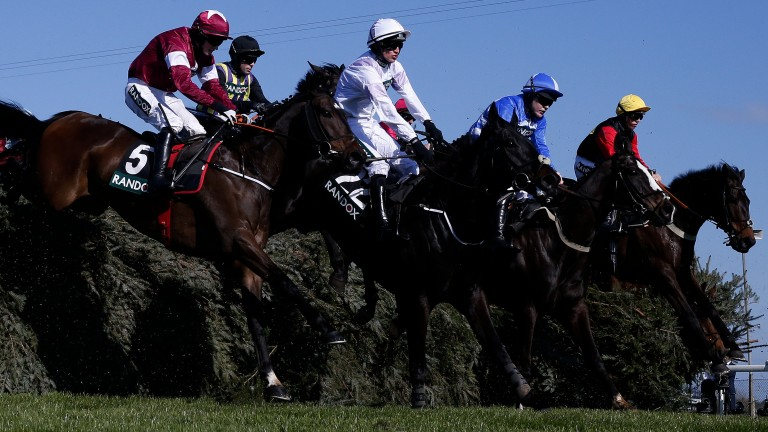 Sit back: The runners, including the winner Ultragold (right), negotiate The Chair