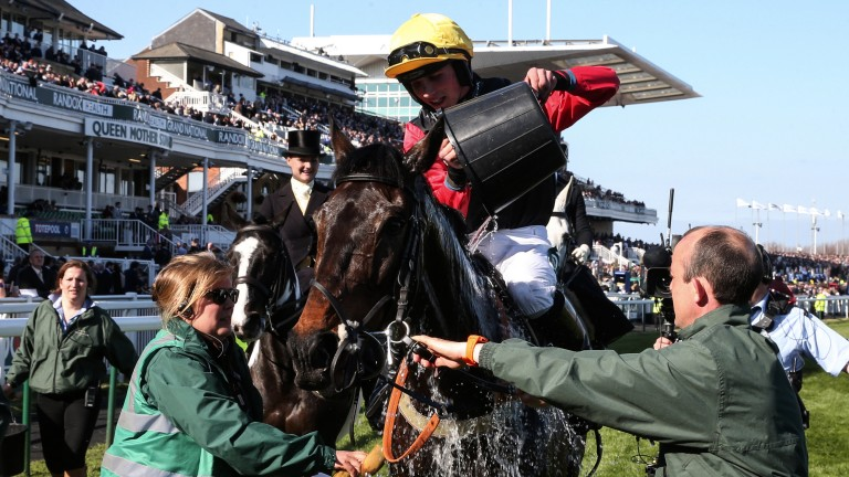 Cooling down: Ultragold gets a well-earned bucket of water following his game Topham win