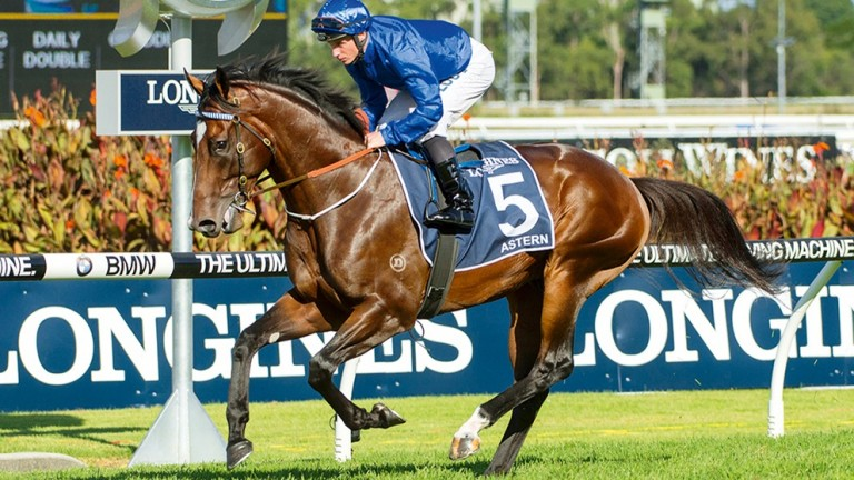 Astern: won the Silver Slipper Stakes as a juvenile, a key trail for the Golden Slipper