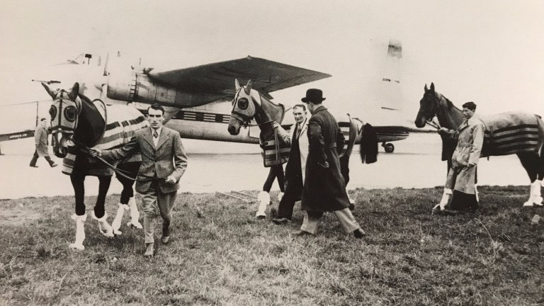 Cottage Rake, Castledermot and Hatton's Grace prepare to board at Shannon airport