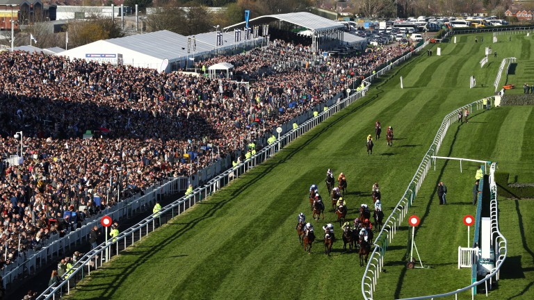 Runners at Aintree