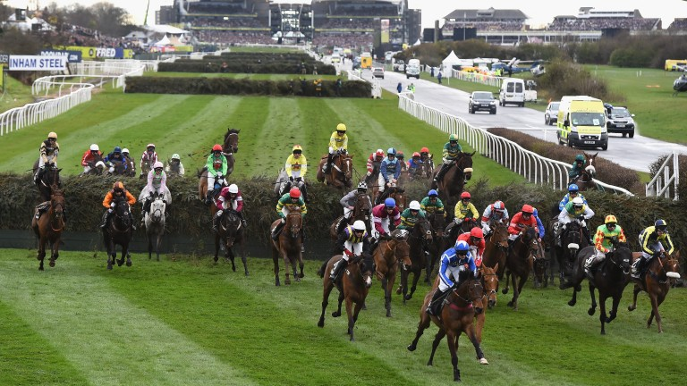 Grand National action: thick and fast at Aintree last year