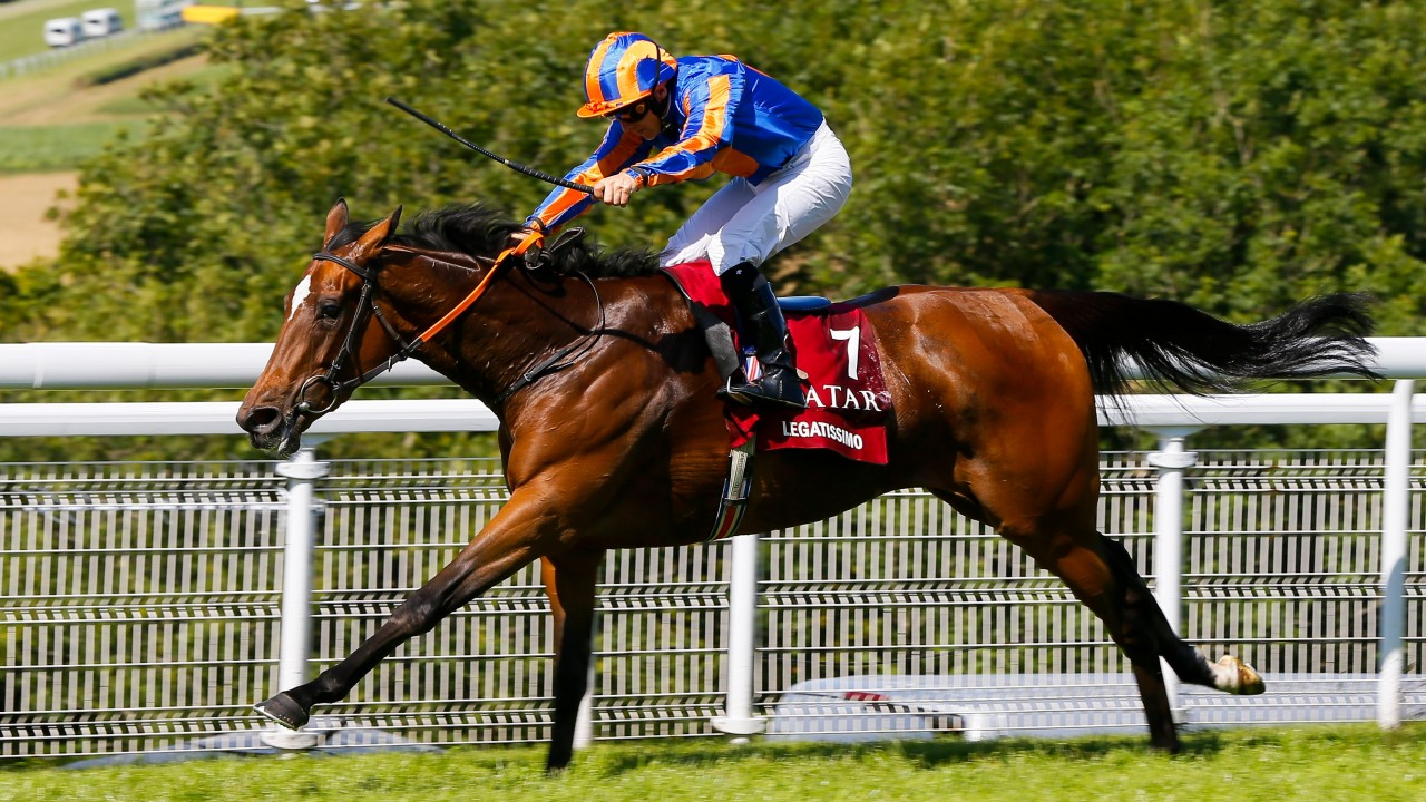 Quality over quantity in 2018 as Newsells Park Stud