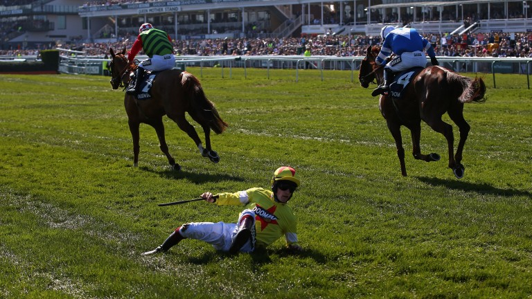 What happened there? A shellshocked Sam Twiston-Davies gathers himself off the turf following his freak fall after the last on Politologue in the Maghull Novices' Chase. The race went to the grey's stablemate San Benedeto