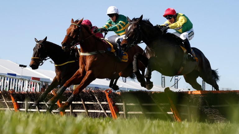 Touch down together: eventual winner Yanworth is sandwiched between Supasundae and Snow Falcon (left) in a thrilling finish to the Liverpool Hurdle