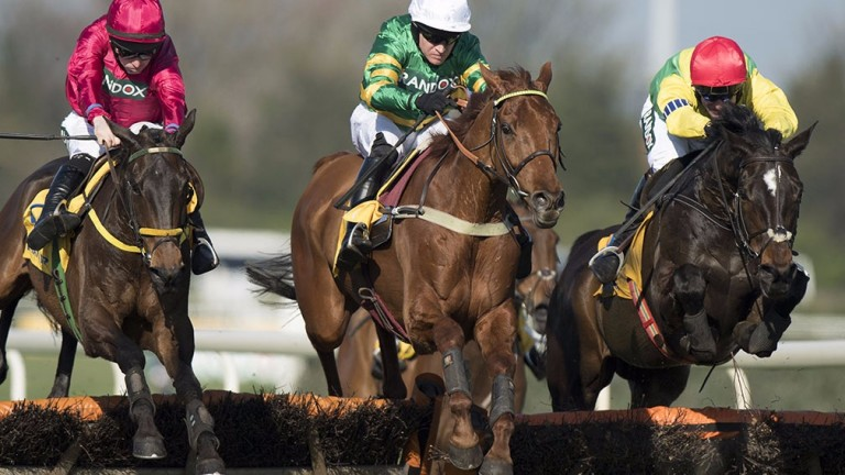 Yanworth (centre): tremendous value for the Stayers' Hurdle if connections decide to return to the smaller obstacles