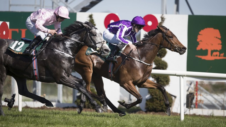 Hydrangea and Padraig Beggy edge out Winter in the Ballylynch Stud 1,000 Guineas Trial Stakes at Leopardstown