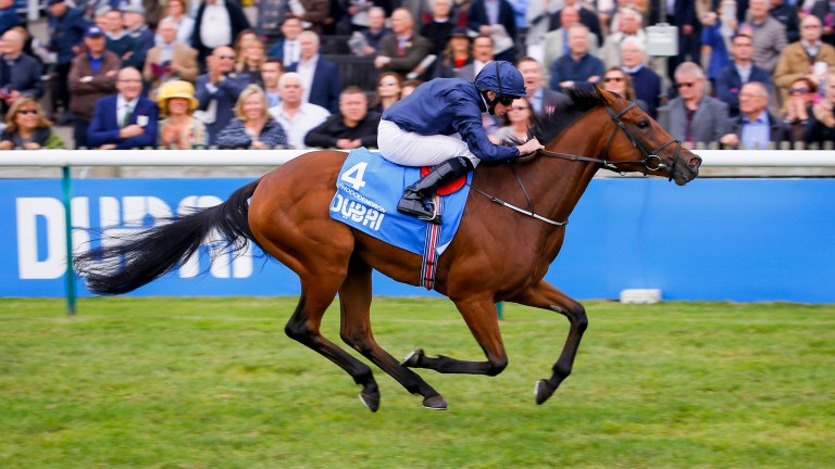 Rhododendron: odds-on to triumph in Oaks