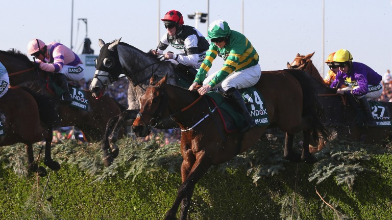 Cause Of Causes: will likely head to the Cross Country at Cheltenham again