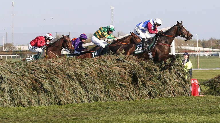 Hitting the front: One For Arthur takes the last ahead with Cause Of Causes and Jamie Codd (14) giving chase, but to no avail as the Lucinda Russell-trained One For Arthur gives Scotland a famous victory