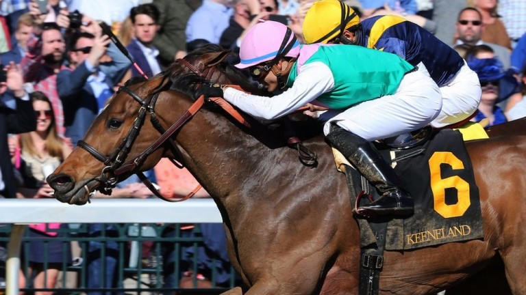 Paulassiliverlining (Jose Ortiz) makes a winning debut for trainer Chad Brown in the Grade 1 Madison at Keeneland after her purchase by the Juddmonte team