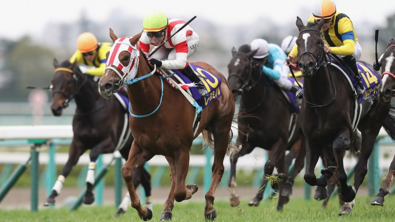 Reine Minoru draws clear of Soul Stirring in the Oka Sho