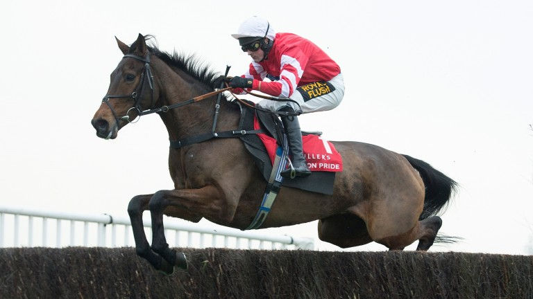 Coneygree: heavyweight chaser has been off since November