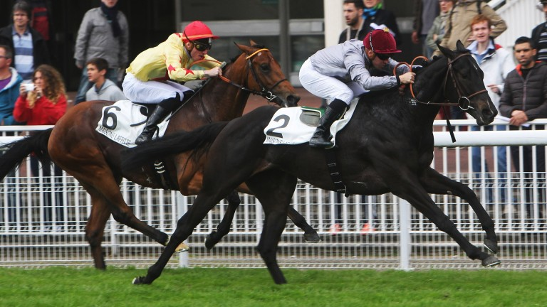 Al Wukair and Gregory Benoist scythe through the field to land the Prix Djebel in impressive fashion