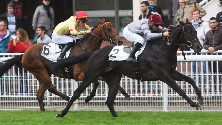 Al Mukair gains an impressive victory in the Prix Djebel