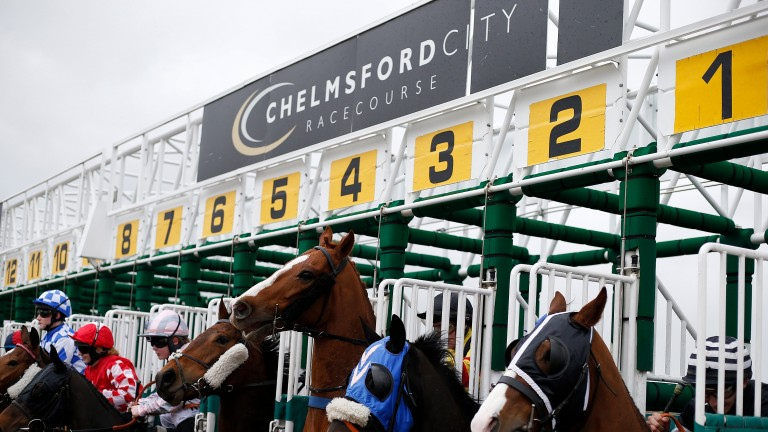 Chelmsford stages racing on Thursday