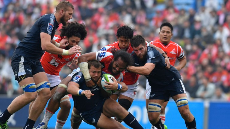 The Sunwolves beat the Bulls last week