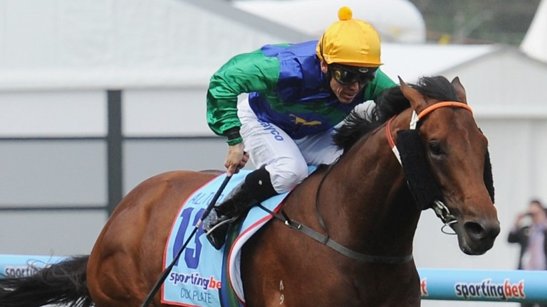All Too Hard: half-brother to Black Caviar will see a reduction in his fee