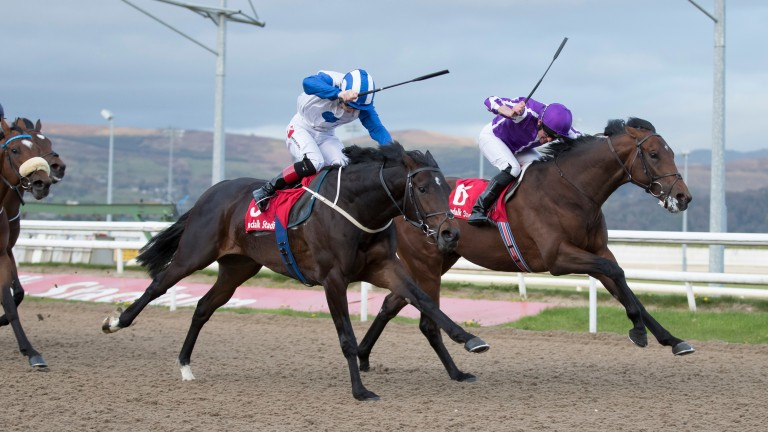 War Secretary (right) holds off Noivado to land the feature Patton Stakes at Dundalk