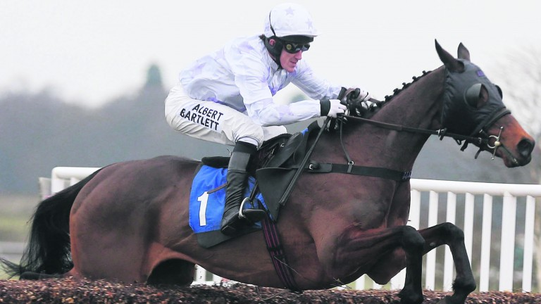 Holywell: performed well in big races on several occasions