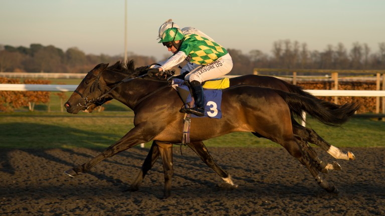 Second Thought bids to maintain his unbeaten record on the all-weather  at Kempton today
