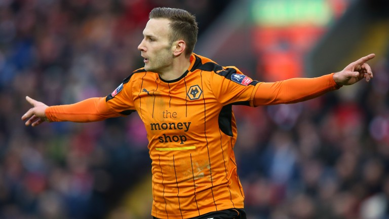 Wolves forward Andreas Weimann