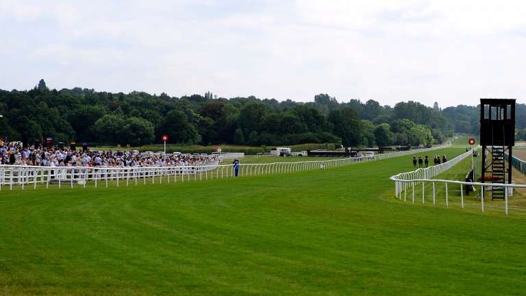 Lingfield's turf track: two significant revisions and two new starts