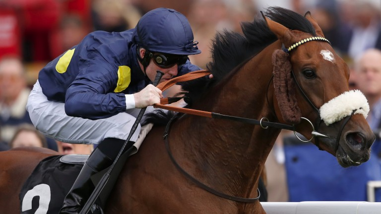 CHICHESTER, ENGLAND - SEPTEMBER 23:  Pat Cosgrave riding Battalion (R) win The Front Events Foundation Stakes at Goodwood racecourse on September 23, 2015 in Chichester, England. (Photo by Alan Crowhurst/Getty Images)