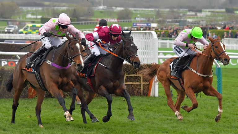 Vroum Vroum Mag (left) tussling with her Cheltenham conqueror Apple's Jade (centre) and Limini (right)
