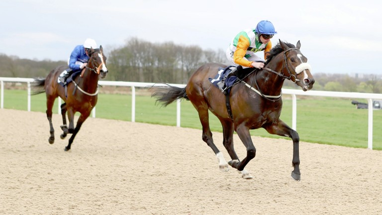 Forest Ranger and Tony Hamilton are well on top at the finish at Newcastle
