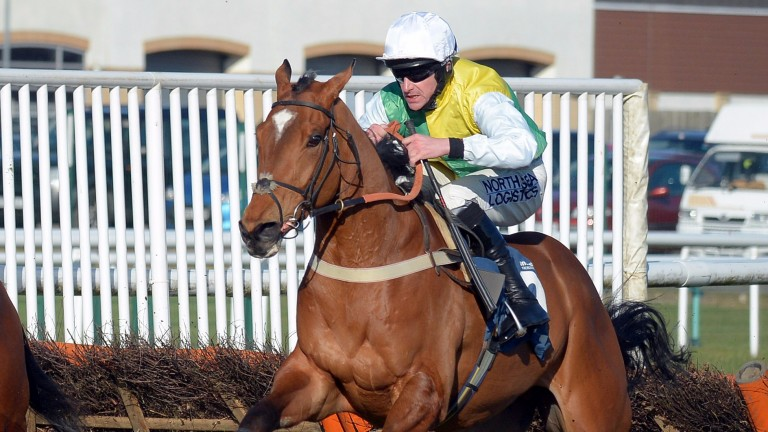 Our Thomas bids for valuable compensation at Haydock after Sedgefield defeat