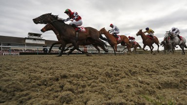 Tight call: 33-1 shot Forceful Appeal (near side) gets the better of favourite War Glory under Paddy Bradley in the apprentice handicap on All-Weather Finals day