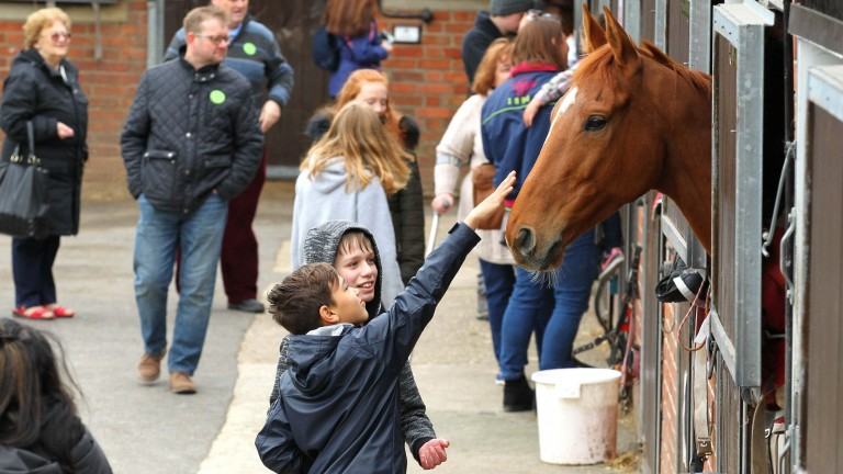 The next generation enjoying meeting the horses at Warren Greatrex's stable