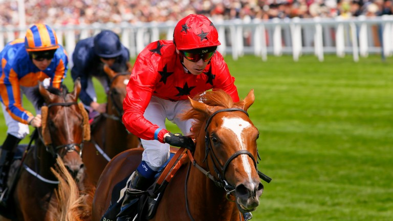 Balios: maternal grandson of Elle Danzig struck at Royal Ascot in the King Edward VII Stakes