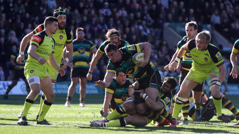 Louis Picamoles on the charge for Northampton