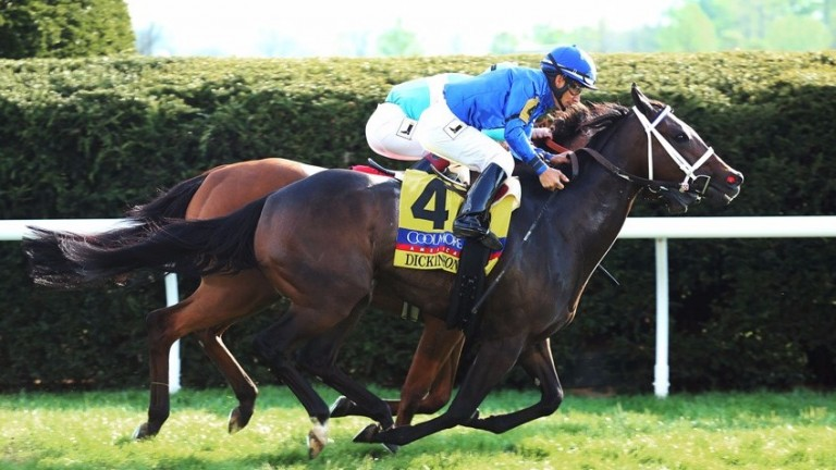 Dickinson (Paco Lopez) nabs Lady Eli in the shadow of the wire to win the Grade 1 Jenny Wiley, thereby completing a four-timer for Godolphin at Keeneland on Saturday