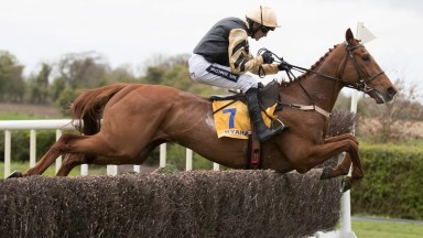 Yorkhill puts in another left-handed leap on his way to defeat at Fairyhouse
