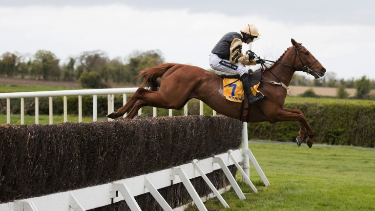 Yorkhill, the latest superstar by the late Presenting, in full flight