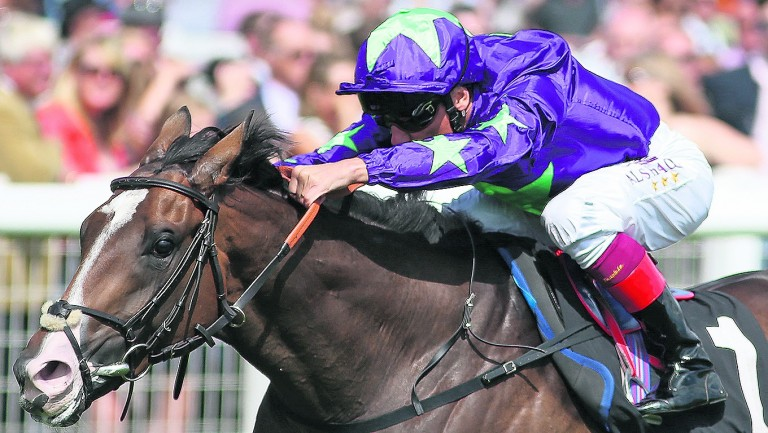 Escobar could prove a live outsider in the 2,000 Guineas for Hugo Palmer