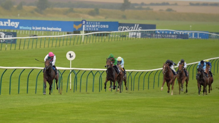 Via Egnatia: clear of field at Newmarket last year